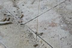 Mariahilf - Zwischenzustand,Bauteiloberfläche mit Schadstellen